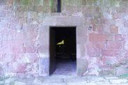 Bianyal 2014 - Instal·lació Job Ramos (Sant Andreu de Socarrats)