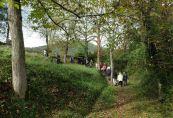 Bianyal 2015 - De camí cap a Sant Martí de Solamal