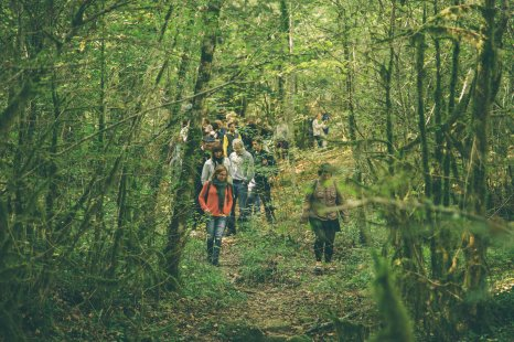 Bosc de Farró (foto: Marina Sáenz de Pablo)