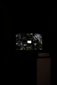 """Transhumar""_Mar Serinyà_Bianyal 2019 (foto: Luís Delgado)"