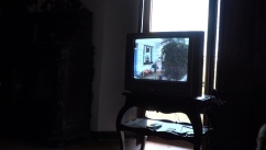 """TV""_Irene Solà_Bianyal 2019"