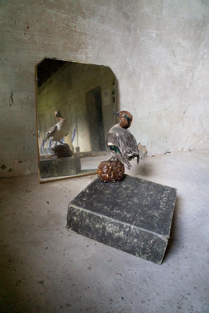"""Gabinet d'arqueologia absurda"" Quim Domene (Foto: Luís Delgado)"